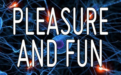 The difference between Pleasure and Fun